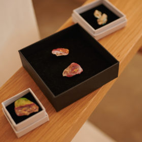 oyster shell series